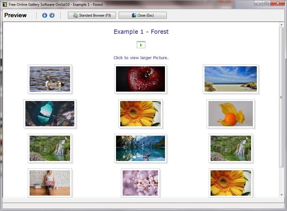 HTML Photo Gallery